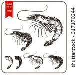 shrimps.  graphic style vector... | Shutterstock .eps vector #317170244