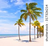 palm trees on a beautiful sunny ... | Shutterstock . vector #317326214