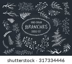 hand drawn branches collection. ...   Shutterstock .eps vector #317334446