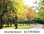 blurred autumn golden park... | Shutterstock . vector #317393834