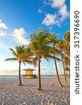 palm trees and lifeguard house... | Shutterstock . vector #317396690