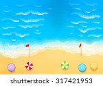 beautiful beach with waves  rip ... | Shutterstock .eps vector #317421953
