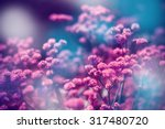 Beautiful Flowers With The...