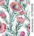 watercolor tropical protea... | Shutterstock . vector #317530058