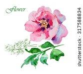pink peony watercolor | Shutterstock . vector #317588834