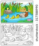 coloring book or page cartoon... | Shutterstock .eps vector #317588990
