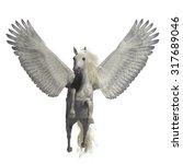 White Pegasus On White  ...