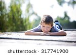 caucasian boy smiling and... | Shutterstock . vector #317741900