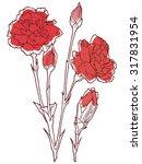 carnation flowers on a white... | Shutterstock .eps vector #317831954
