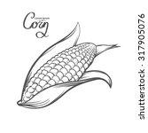 corn  outline style  for menu ...   Shutterstock . vector #317905076