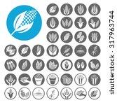 corn icons set. illustration... | Shutterstock .eps vector #317963744