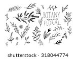 black vector hand drawn floral... | Shutterstock .eps vector #318044774