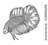 fighting fish vector... | Shutterstock .eps vector #318096698