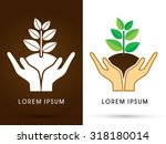 hands holding tree with leaf... | Shutterstock .eps vector #318180014