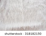 Small photo of White silk coth texture background.