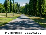 long path. long tree pathway.... | Shutterstock . vector #318201680