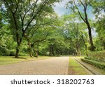 stone pathway in the green park | Shutterstock . vector #318202763