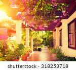 beautiful vintage landscaped...   Shutterstock . vector #318253718