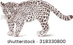 cub of leopard   Shutterstock .eps vector #318330800