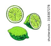 isolated illustration of lime.... | Shutterstock .eps vector #318387278