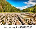 north part of duffey lake... | Shutterstock . vector #318435560