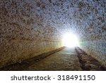 ukraine  tarakanov fortress ruin | Shutterstock . vector #318491150