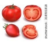 set tomatoes | Shutterstock . vector #318501818
