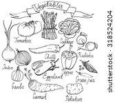 hand drawn vector vegetables... | Shutterstock .eps vector #318524204