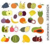 fresh fruits set. hand drawn... | Shutterstock .eps vector #318536024