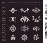 calligraphic crest logo icons... | Shutterstock .eps vector #318589373
