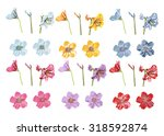 Vector Big Collection Flowers....