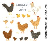 chickens and chicks... | Shutterstock .eps vector #318955298