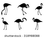 Set Of Silhouettes Of Flamingo...