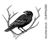 vector black and white crow... | Shutterstock .eps vector #318996080