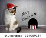 xmas congratulate concept  cat... | Shutterstock . vector #319009154