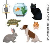 Set Of Pet Animals