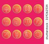 zodiac signs. flat thin set of... | Shutterstock .eps vector #319262534