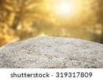 Autumn Background And Stone