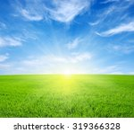 Green Field Blue Sky And Sun.