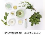 ingredients for a homemade... | Shutterstock . vector #319521110