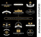 set of vintage  badges and... | Shutterstock .eps vector #319556930