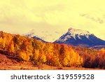 autumn in colorado mountains | Shutterstock . vector #319559528