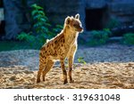 spotted hyena | Shutterstock . vector #319631048