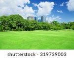 green grass field in big city...   Shutterstock . vector #319739003