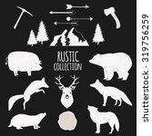 hand drawn wilderness animals... | Shutterstock .eps vector #319756259