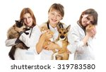 Stock photo vet and puppy and kitten 319783580