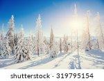 Fantastic Winter Landscape In...