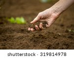 close up of the hand of a woman ...   Shutterstock . vector #319814978
