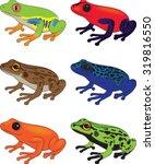 frog clip art vector... | Shutterstock .eps vector #319816550