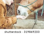 Stock photo woman petting her horse close up on hands and horse mouth concept about animals 319869203